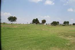 Vacant Land In Serengeti! PRIME PROPERTY! More Than 1300 Square Meters