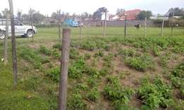 Plot for sale in Lanet (quarter acre)
