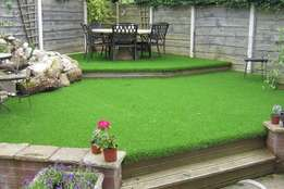lawn grass for sale