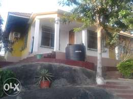 House to let Capripoint, Mwanza
