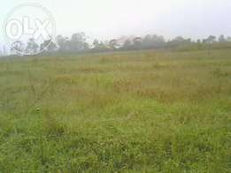 5 acres for sale in Ol-Kalau / kwa Mseven