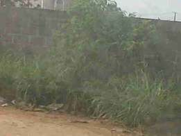 Dry and Fenced Half a Plot of Land at Idimu Ejigbo Estate. 3.5m 4m, 5m