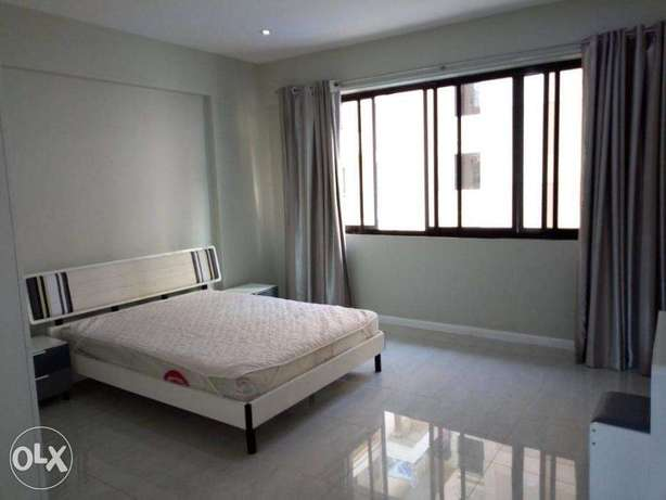 Massive and Spacious 3 Bdrms Furnished Beautiful Modern Apartment in O Dar es Salaam CBD - image 5