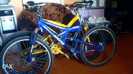 Sport equiped bicycle, disks