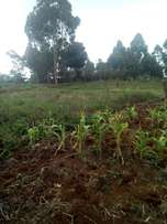 50 by 100 plots for sale at raini