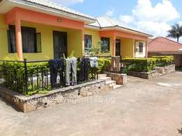 Pretty two bedrooms for rent in Namugongo