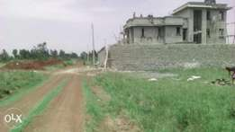 Plot at man'gu investment .juja