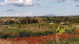 Plots For Immediate Development And Residential Purposes
