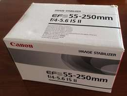 Canon EF-S 55-250 Image Stabilized Lens