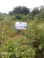 Distress Sale One plot of land for sale