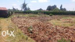 Limuru 100x100 prime land for sale only 40 minutes to Nairobi CBD 2.7M