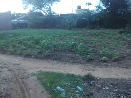 Plot for sale touching bulo cabro 50ft by 100ft
