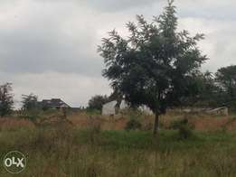 2Acres in Rongai