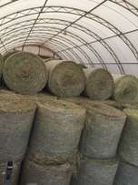Fresh cuts Hay and Straw for sale