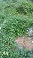 1 plot of Land for Sale around Egbelu, Port Harcourt.