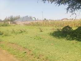 1/4 Acre vacant plot for sale in Fairview estate, Ngata - Nakuru