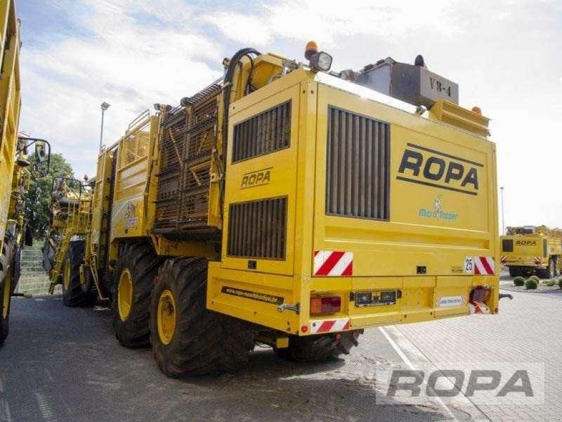 Ropa Euro-tiger V8-4b - 2012 - image 2