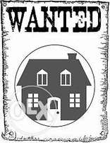 Professional Lady looking for a 2bed place to rent