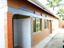 A studio single roomed house for rent in nalya at 350k