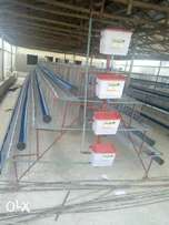 Durable and Affordable 128birds per Unit Poultry Cage for Layers