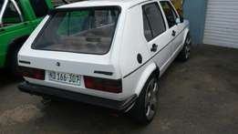 Golf 1 rabbit