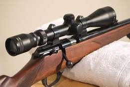 I am looking for a .22 rifle