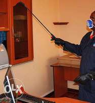 Pest Control - Keep your home free from pests