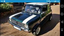 Looking for a classic old mini