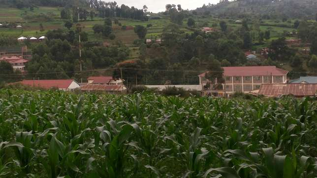 Plot for sale Kisii Town - image 2