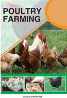 Poultry Farming Guide Book