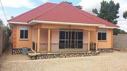 Namugonggokira all rooms self contained house at 317m