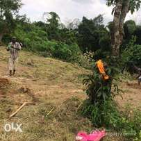 Land in Awka Nise Road for sale