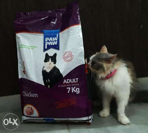 Cat food 7 kg and 15 kg