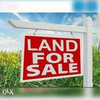 20 plots of land for cheap (450,000) per plot