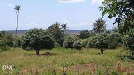 Kwale freehold plot 0.75 acre 1.2 mill