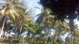 Land in kwale Lunga Lunga