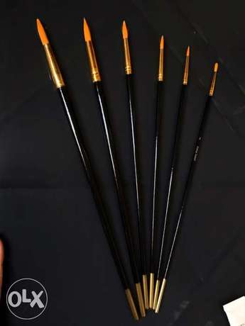 Synthetic brushes 1= 10 000LL 6=50 000LL