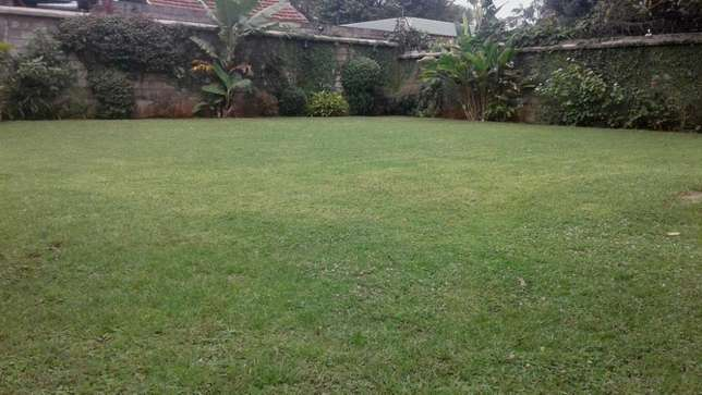 A 5 bed townhouse all en-suite with SQ for rent in Lavington Lavington - image 6