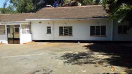 Lavington-Delightful 4Bedroomed bungalow for rent.