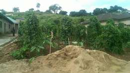 Land at Oba-ile behind Jo-Jein Hotel Akure