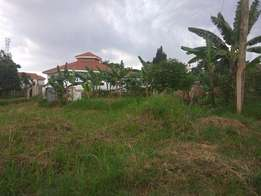 A beautiful plot of land(13decimals) on sale in nalya estate at 170m