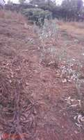 Plot for sale ngong.