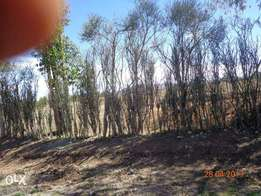 Naromoru, (Naro Moru) Nanyuki, 1, 2,3 and 4 acre prime plots of land