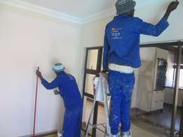 Wall Paints Special