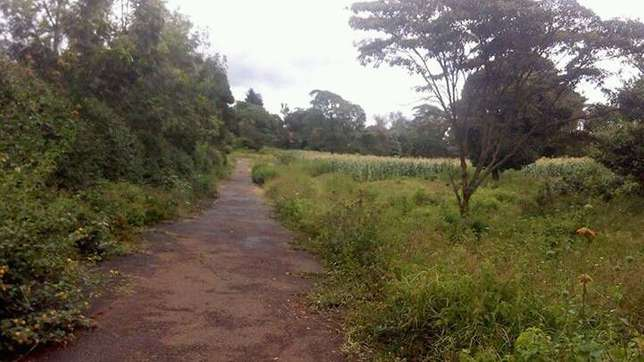 2 Acre plots at 56M EACH in Karen Nairobi CBD - image 2