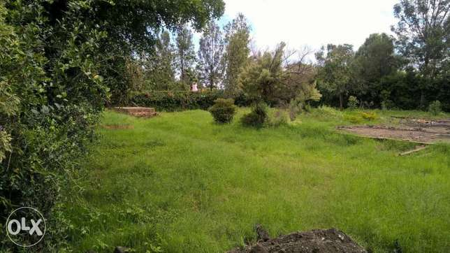 Thome One Avenue Plot for Sale Half an Acre on 3rd Row Kasarani - image 2