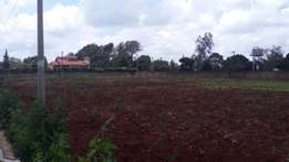 Muthaiga north plot for sale