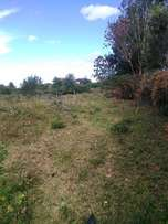 A good 1/4 acre plot on sale