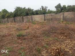 Plots for sale New independence Layout