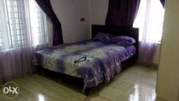Nice Furnished and Serviced Luxury Self Contain at Oke Afa Isolo